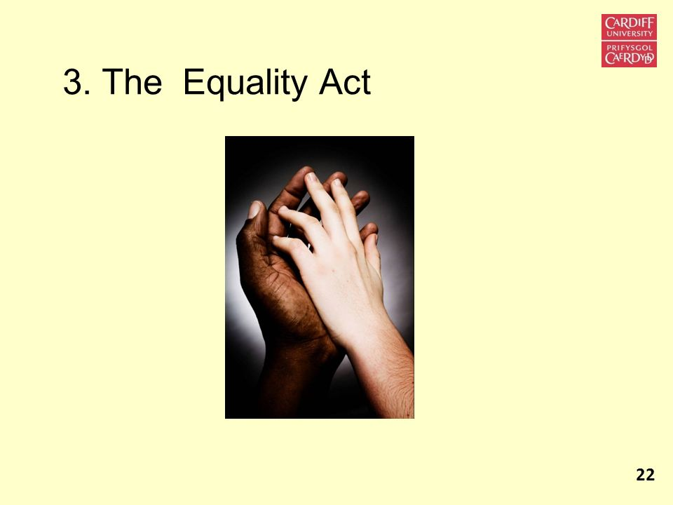 3. The Equality Act 22