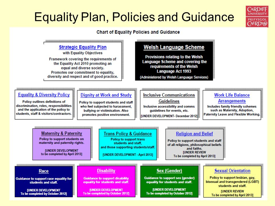 Equality Plan, Policies and Guidance