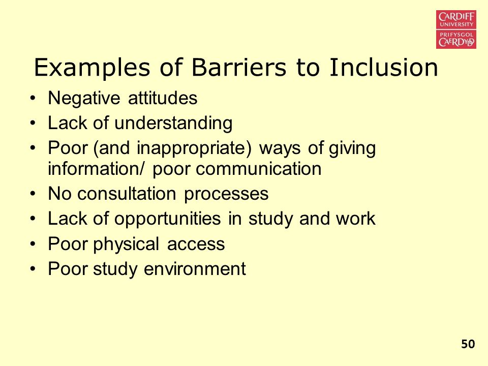 Examples of Barriers to Inclusion