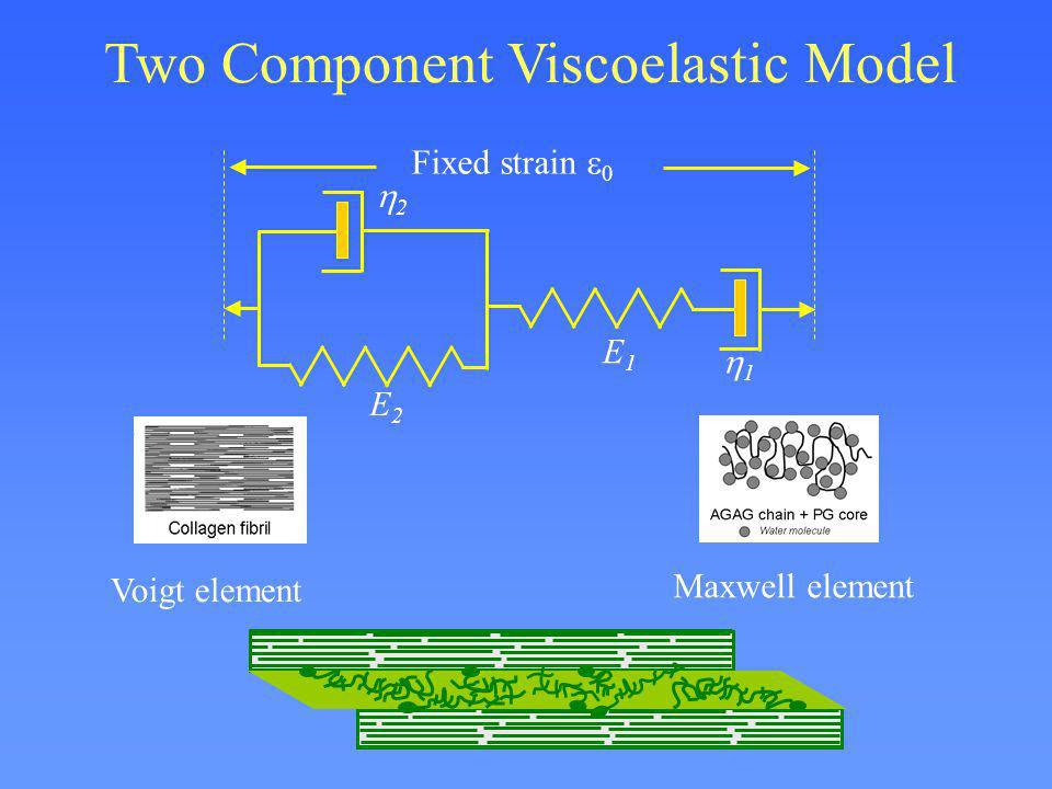 Two Component Viscoelastic Model