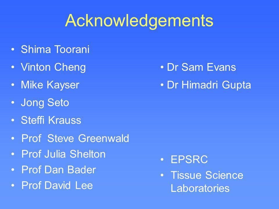 Acknowledgements Shima Toorani Vinton Cheng Mike Kayser Jong Seto