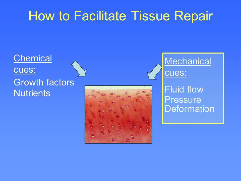 How to Facilitate Tissue Repair