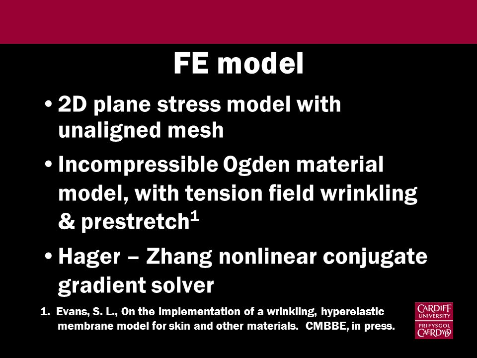 FE model 2D plane stress model with unaligned mesh