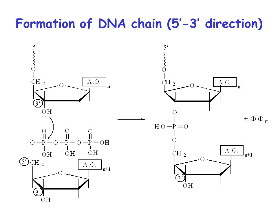 read Peptides in Oncology II: Somatostatin