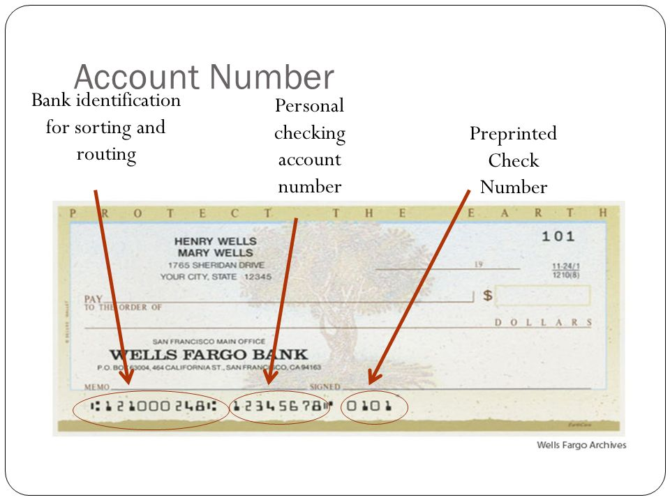 Write account number on check
