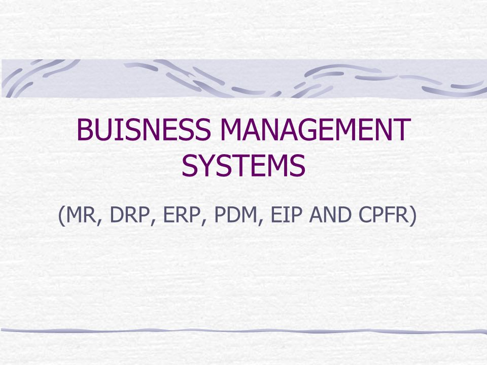BUISNESS MANAGEMENT SYSTEMS