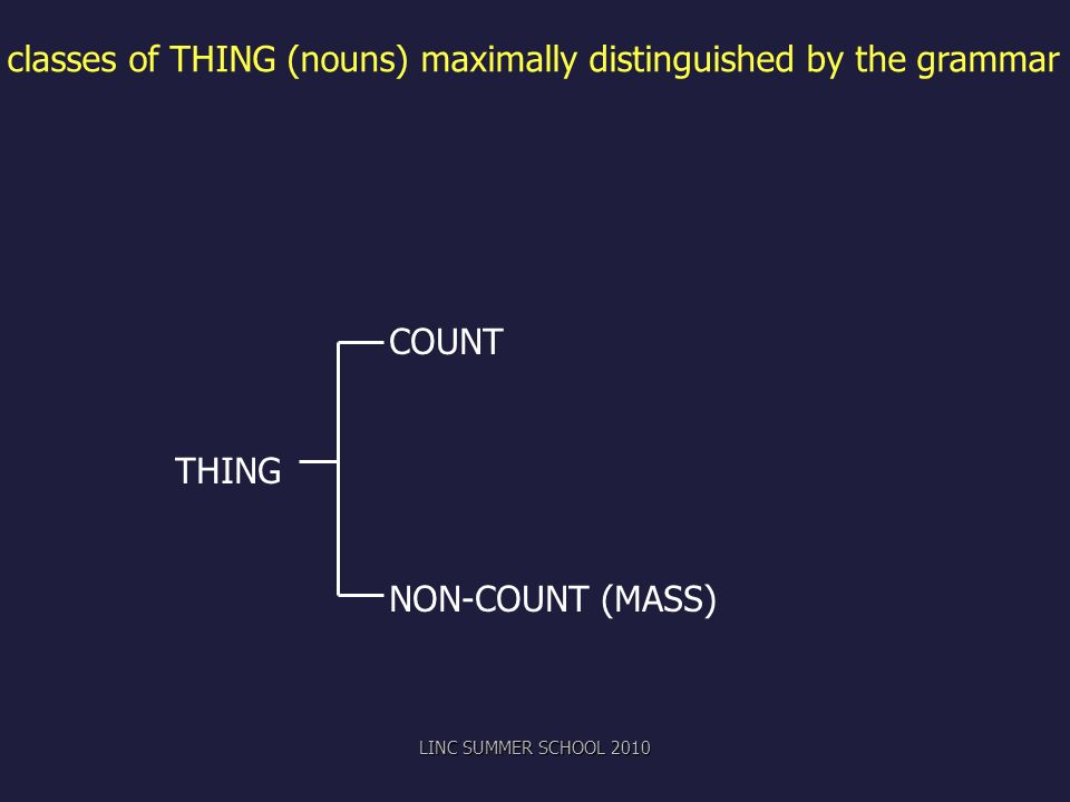 classes of THING (nouns) maximally distinguished by the grammar