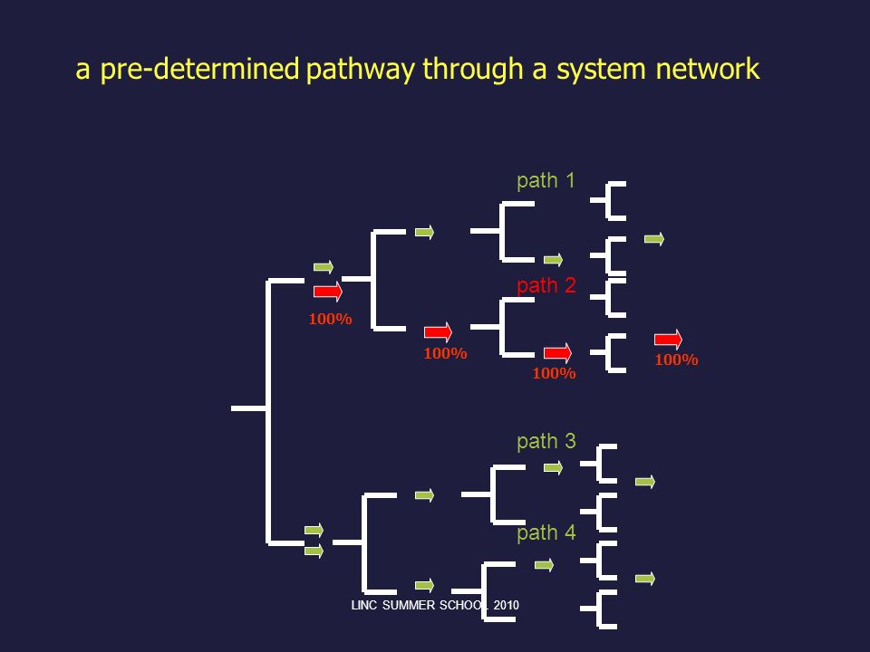 a pre-determined pathway through a system network