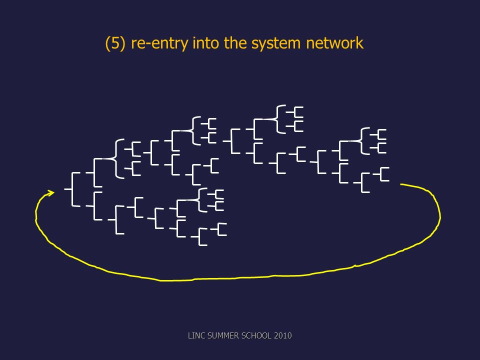 (5) re-entry into the system network