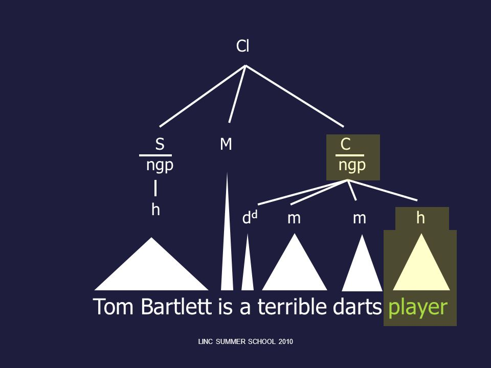 Tom Bartlett is a terrible darts player