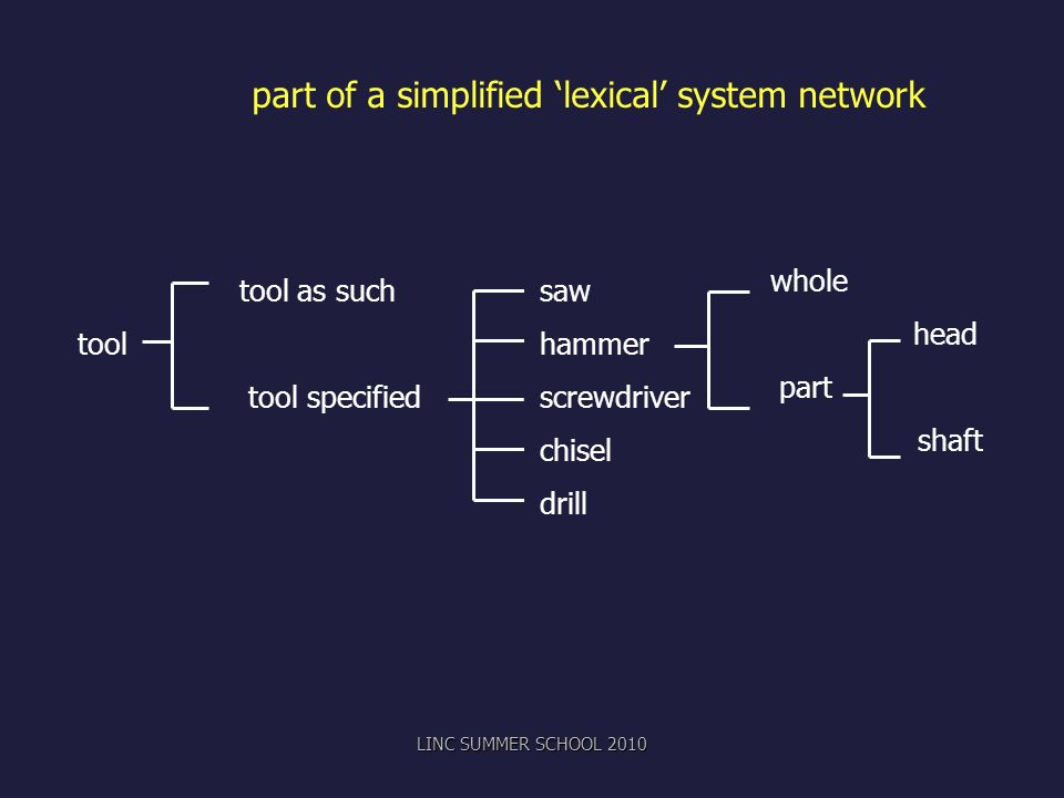 part of a simplified 'lexical' system network