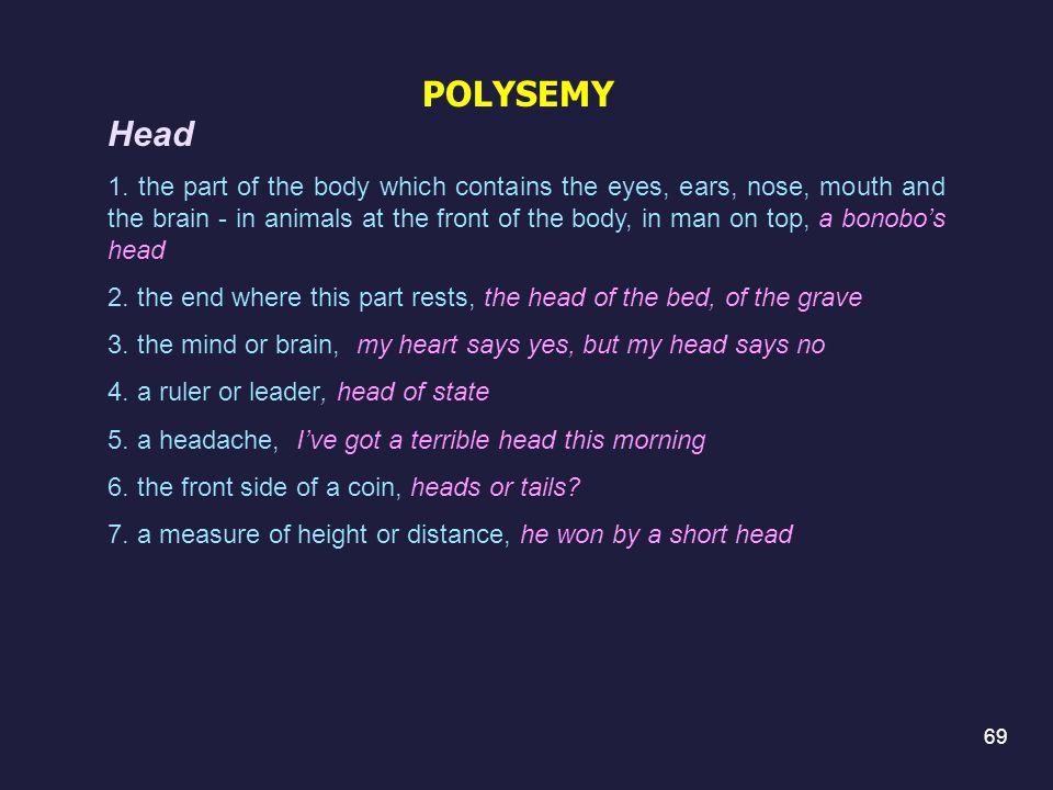 POLYSEMY Head.