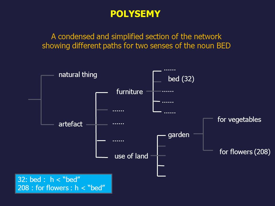 POLYSEMY A condensed and simplified section of the network showing different paths for two senses of the noun BED.
