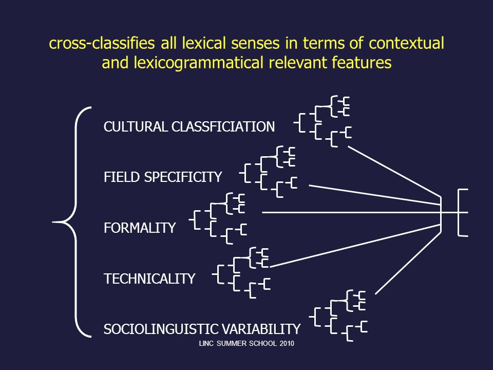 cross-classifies all lexical senses in terms of contextual and lexicogrammatical relevant features