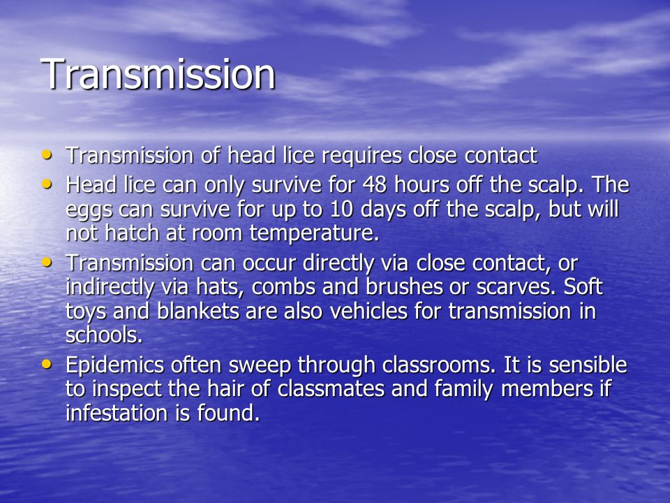 Transmission Transmission of head lice requires close contact