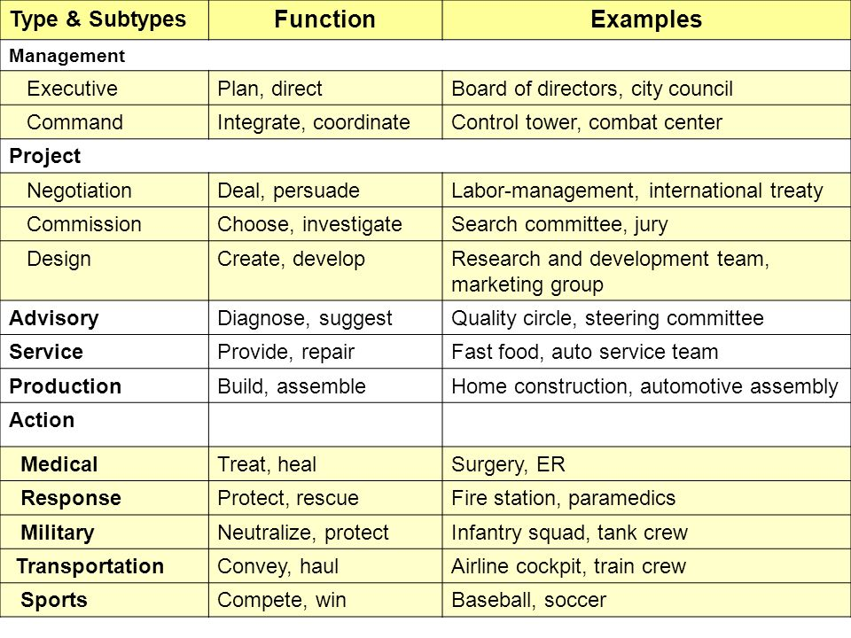 Function Examples Type & Subtypes Executive Plan, direct