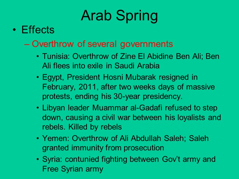 Arab Spring's Affect on Tourism Essay Sample