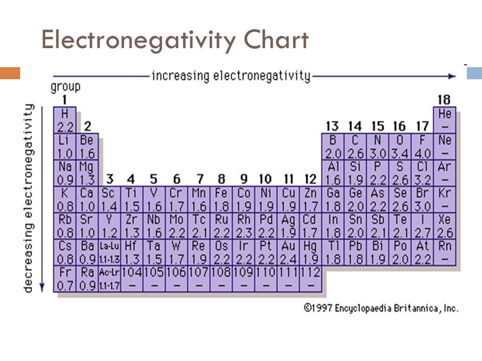 Electronegativity Chart Template   Resume Template