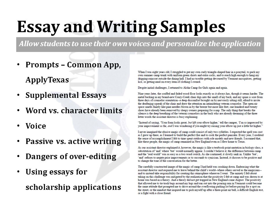 essay for common application word limit Argument essay about global warming common application essay word limit term papers on management year 7 geography homework help.
