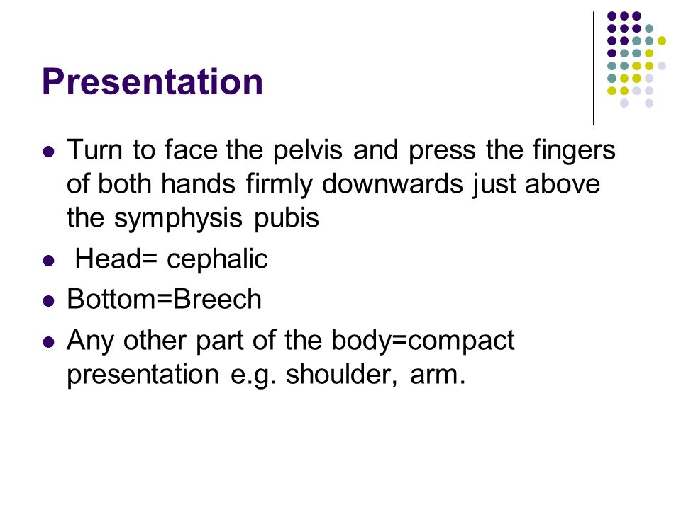 Presentation Turn to face the pelvis and press the fingers of both hands firmly downwards just above the symphysis pubis.