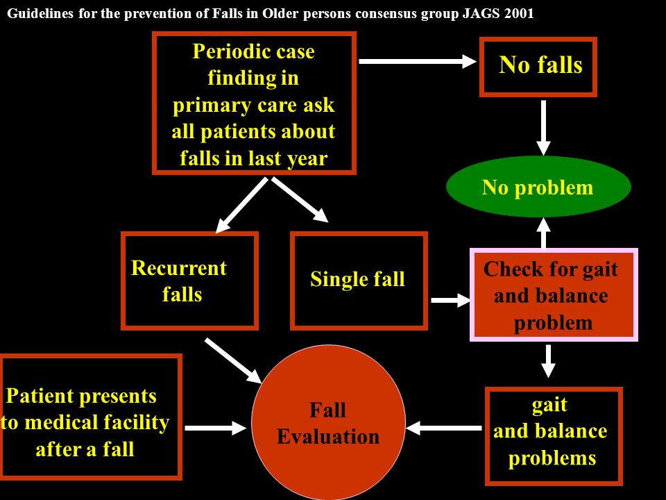 Guidelines for the prevention of Falls in Older persons consensus group JAGS 2001