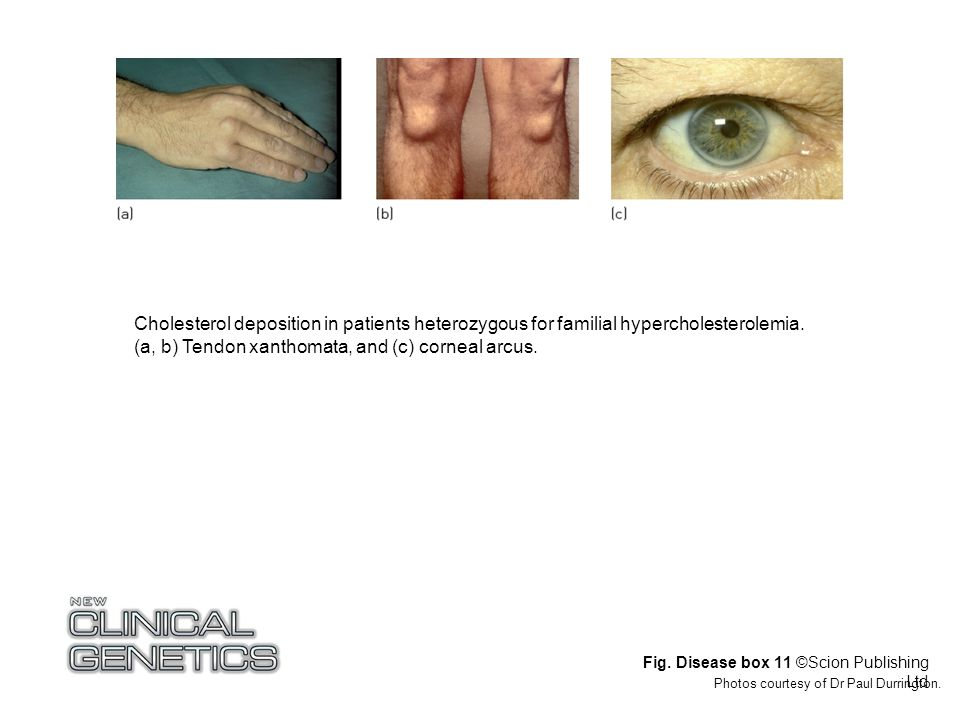 Fig. Disease box 11 ©Scion Publishing Ltd