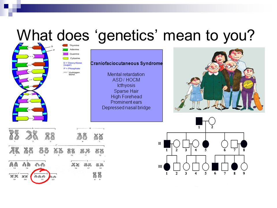 What does 'genetics' mean to you