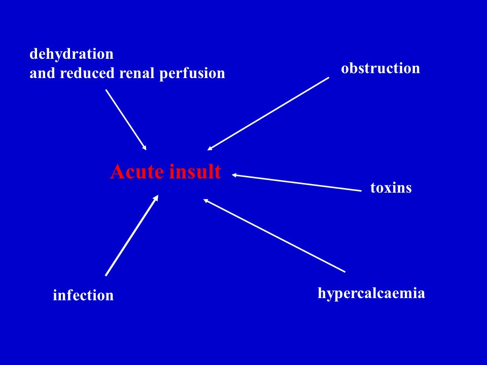 Acute insult dehydration and reduced renal perfusion obstruction