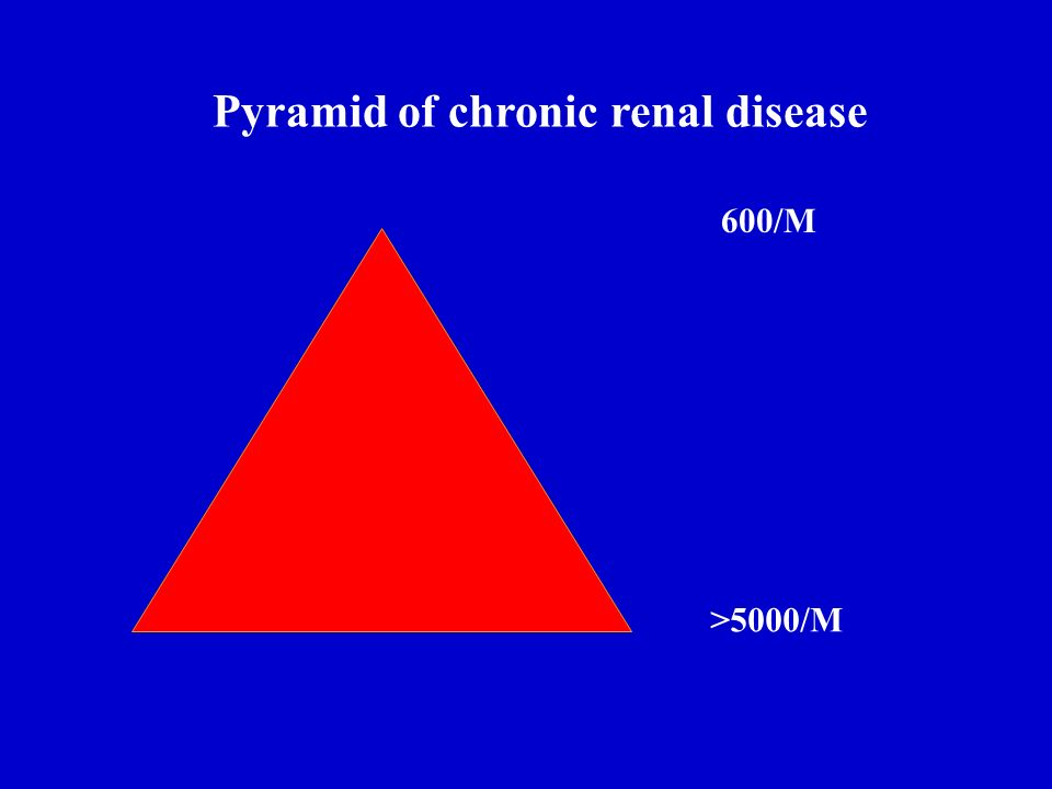 Pyramid of chronic renal disease