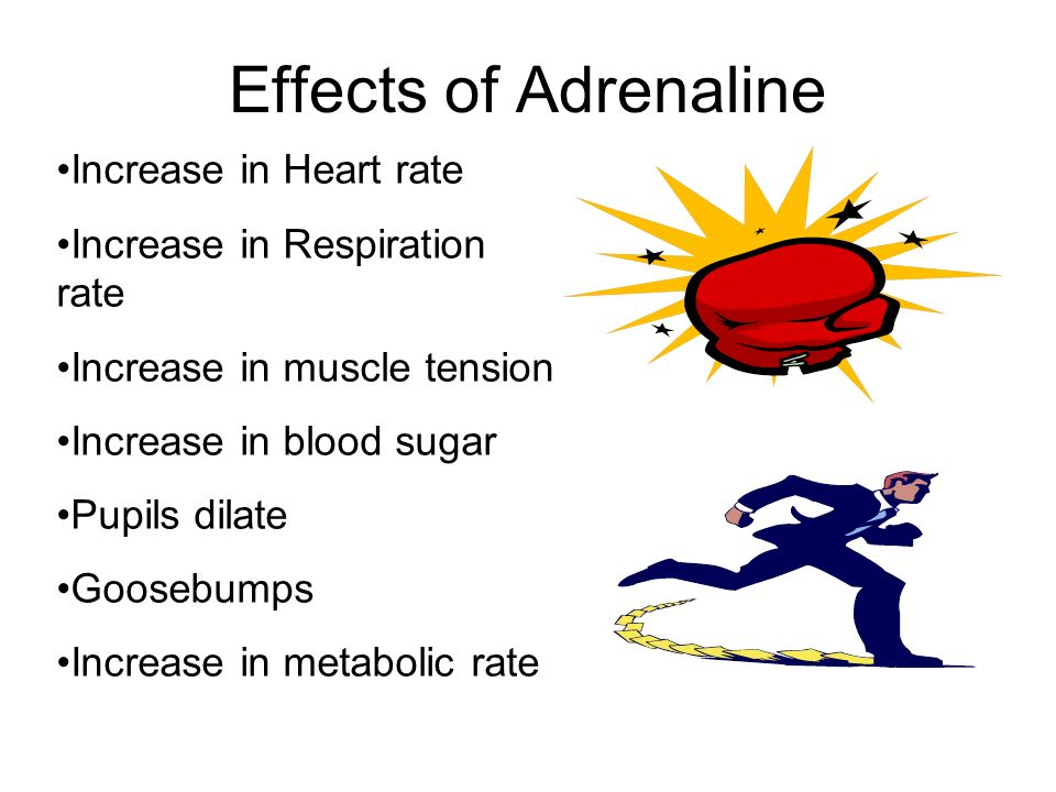 Effects of Adrenaline Increase in Heart rate
