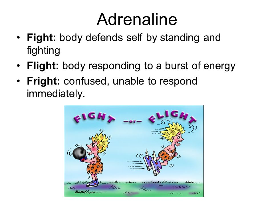 Adrenaline Fight: body defends self by standing and fighting