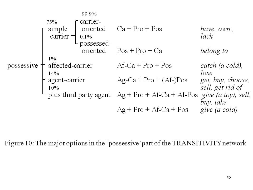 Figure 10: The major options in the 'possessive' part of the TRANSITIVITY network