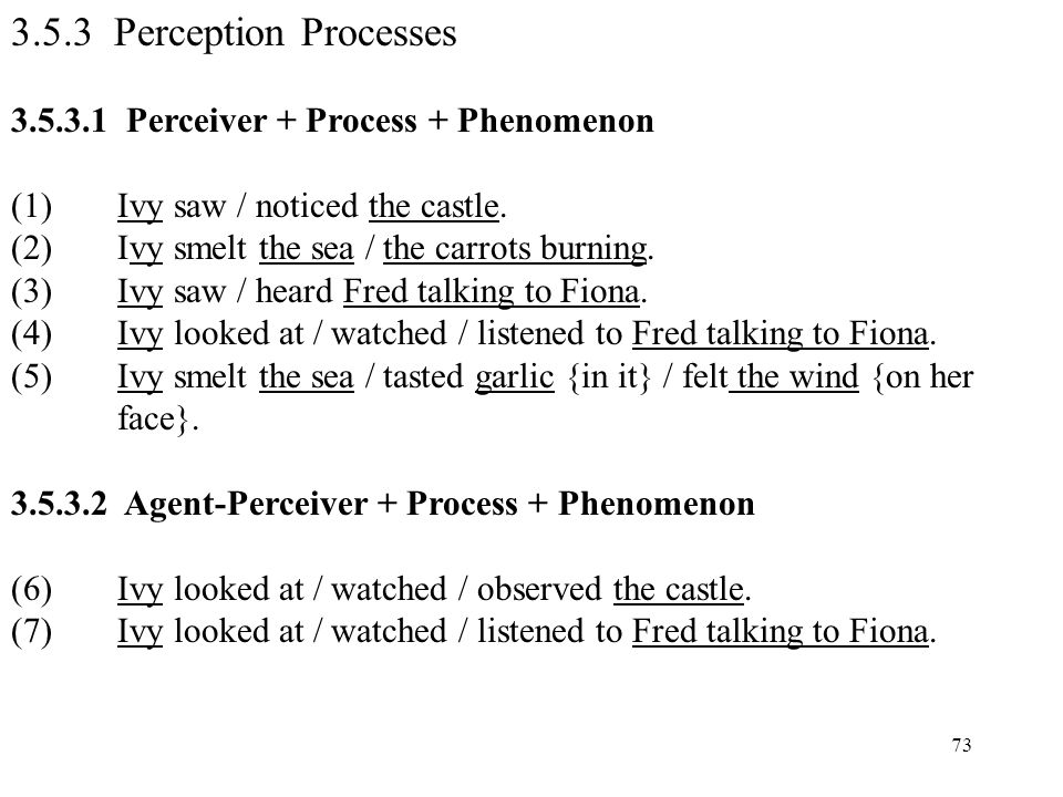3.5.3 Perception Processes 3.5.3.1 Perceiver + Process + Phenomenon