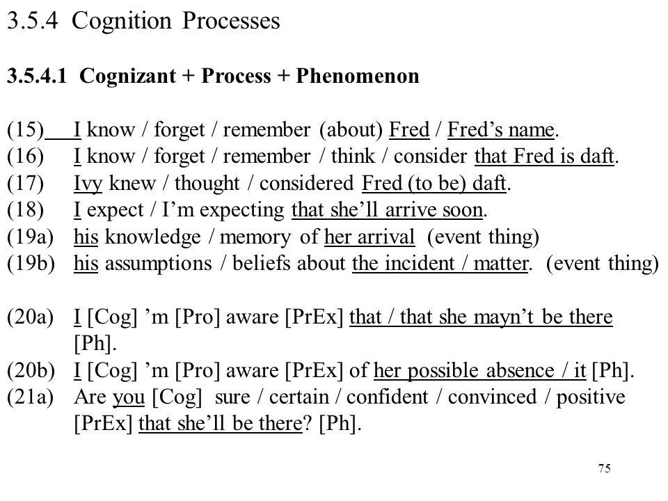 3.5.4 Cognition Processes 3.5.4.1 Cognizant + Process + Phenomenon