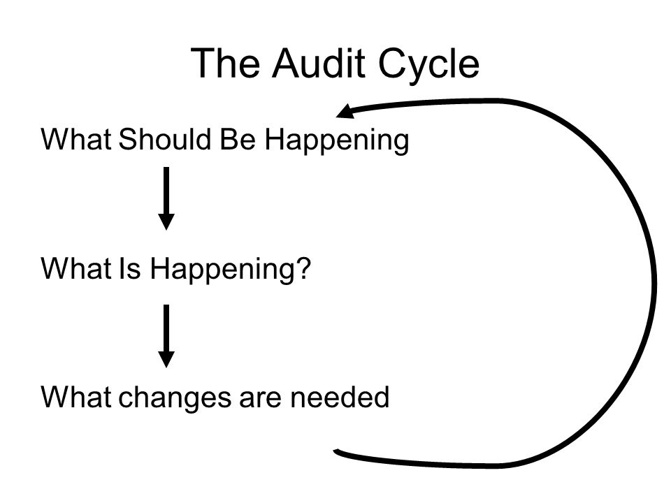 The Audit Cycle What Should Be Happening What Is Happening