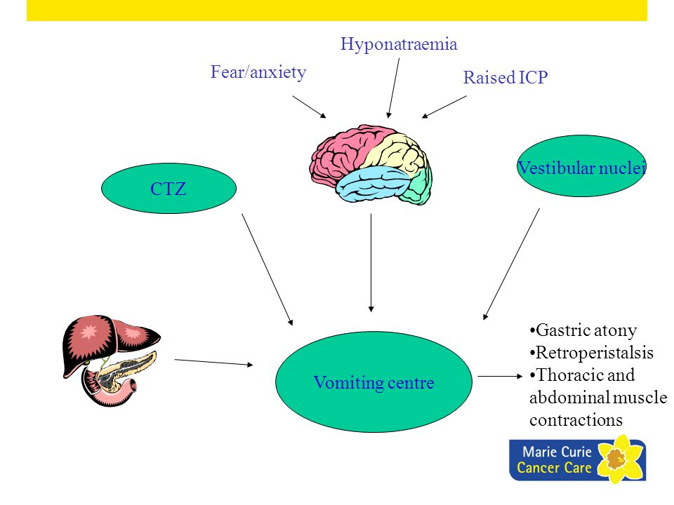 Hyponatraemia Fear/anxiety. Raised ICP. Vestibular nuclei. CTZ. Gastric atony. Retroperistalsis.