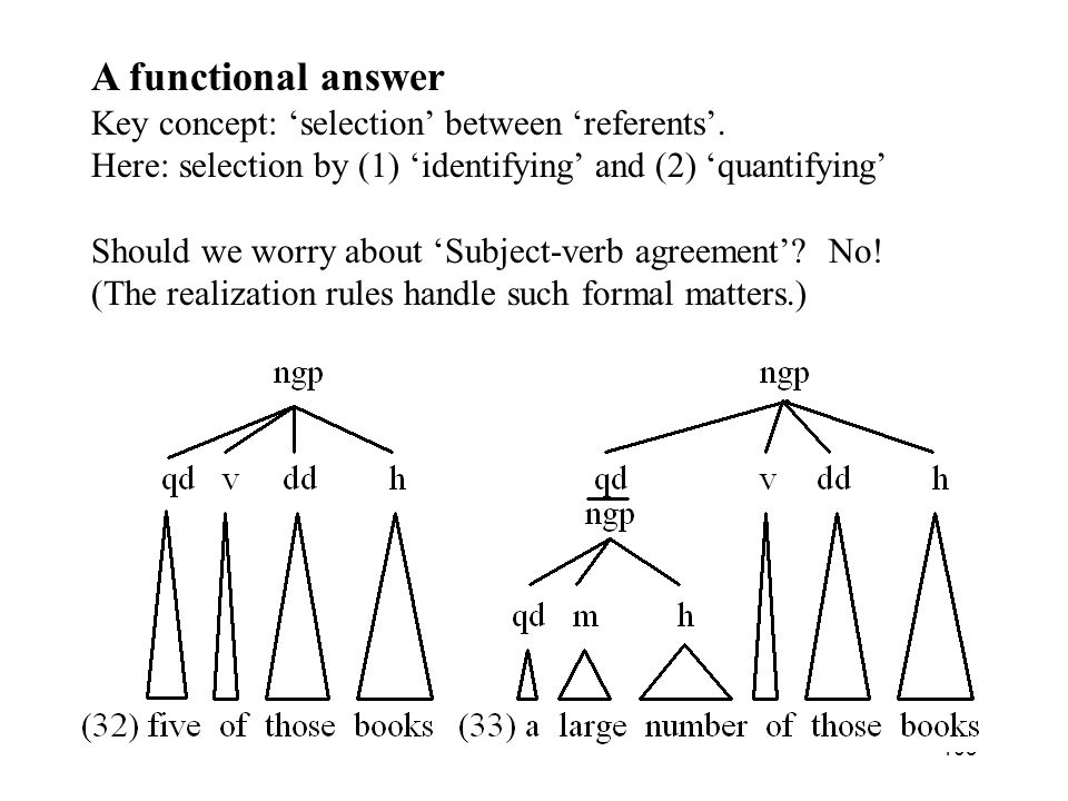 A functional answer Key concept: 'selection' between 'referents'.