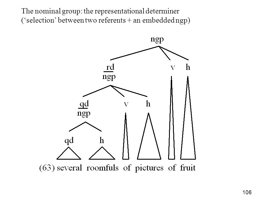 The nominal group: the representational determiner