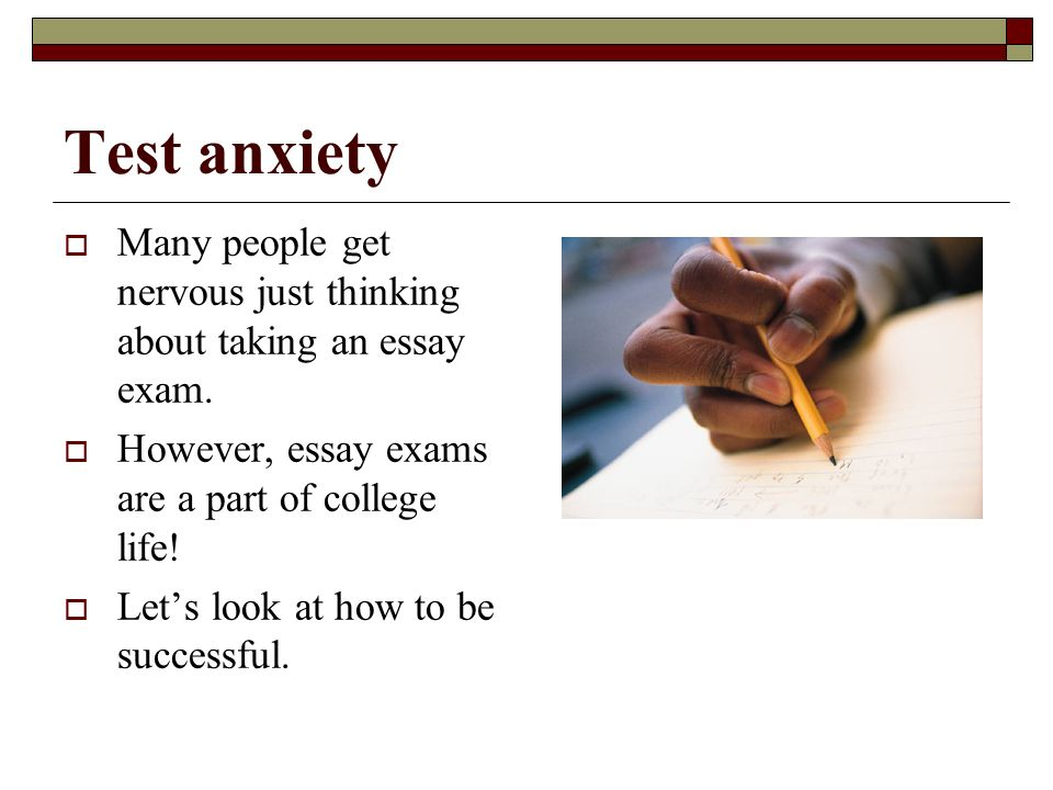 essays on test anxiety
