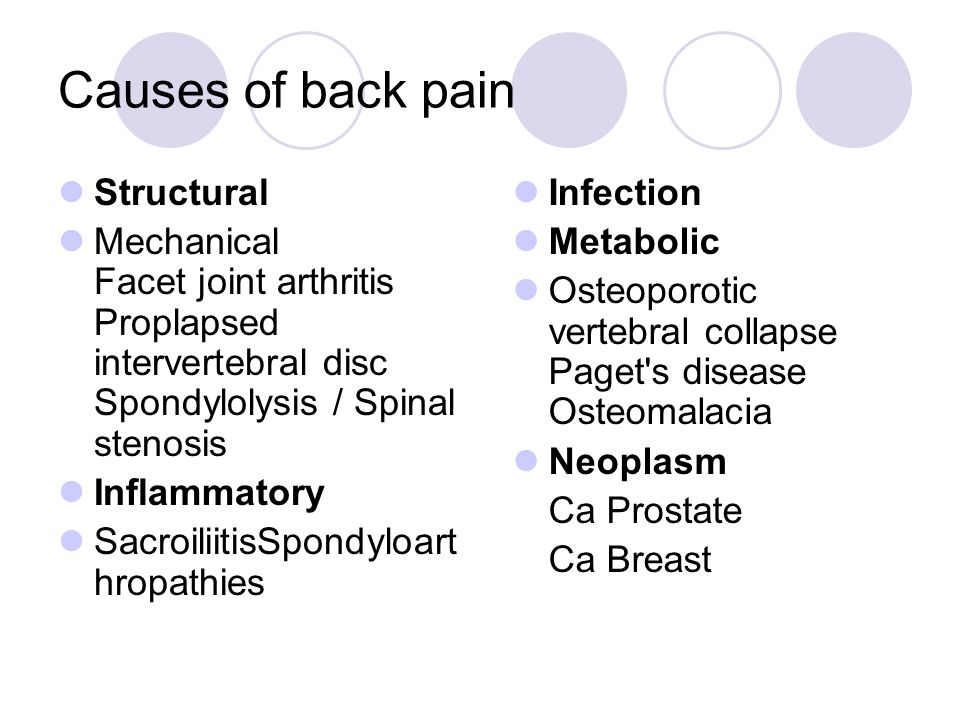 Causes of back pain Structural