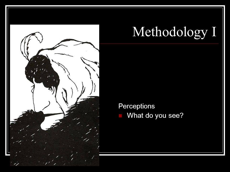 Methodology I Perceptions What do you see