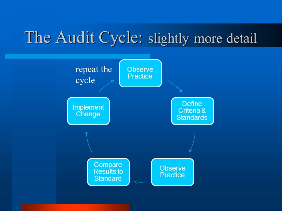 The Audit Cycle: slightly more detail