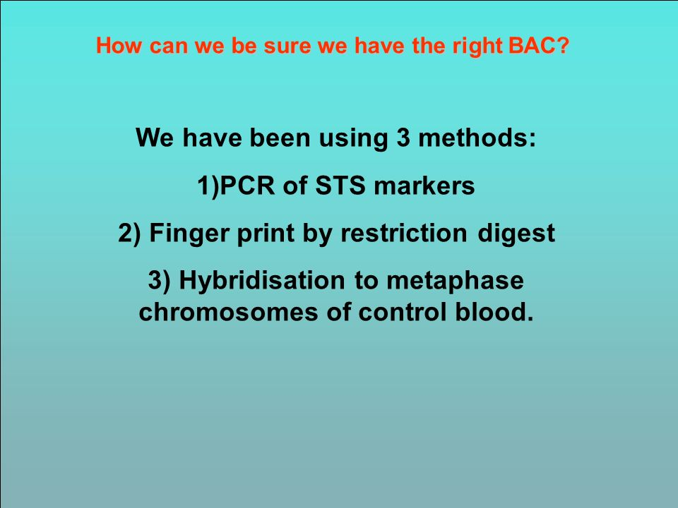We have been using 3 methods: 1)PCR of STS markers