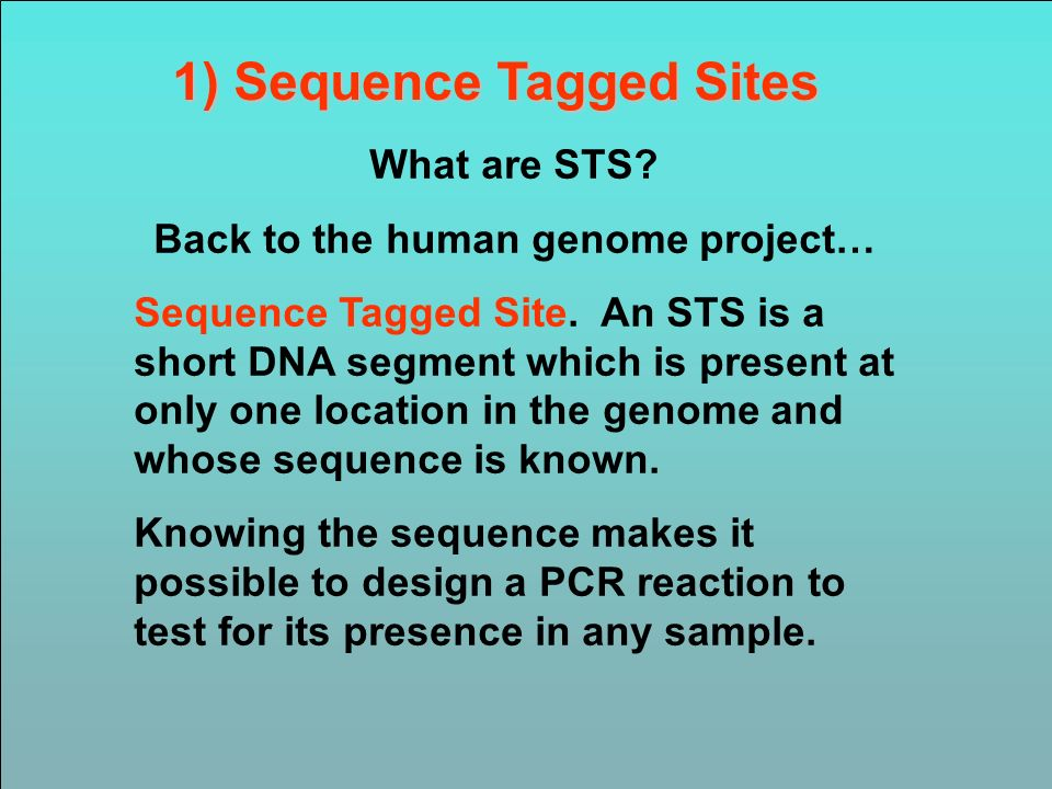 1) Sequence Tagged Sites Back to the human genome project…