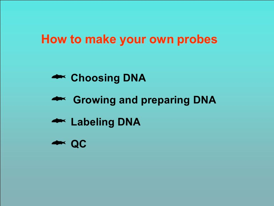 How to make your own probes