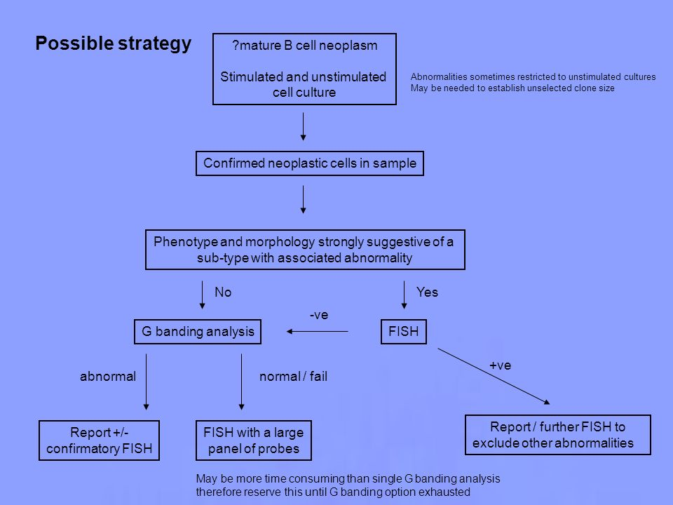 Possible strategy mature B cell neoplasm Stimulated and unstimulated