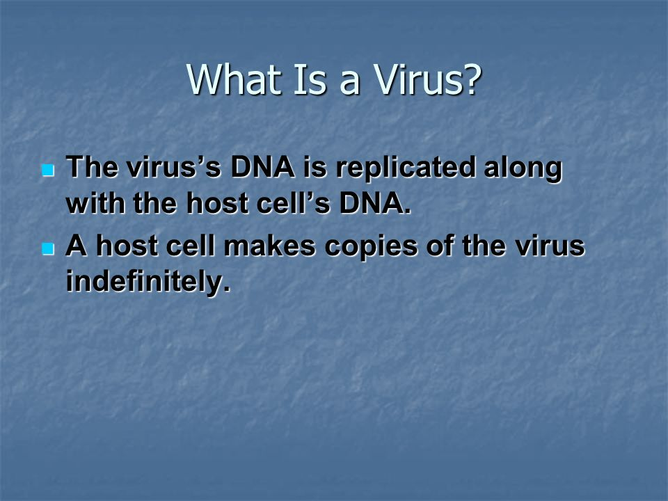 What Is a Virus. The virus's DNA is replicated along with the host cell's DNA.