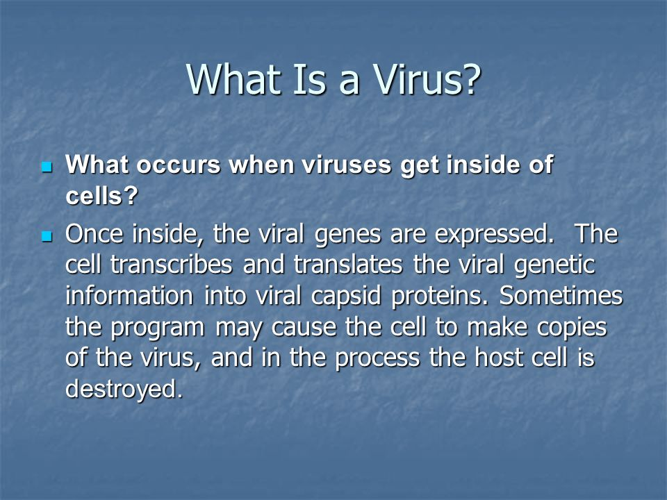 What Is a Virus What occurs when viruses get inside of cells