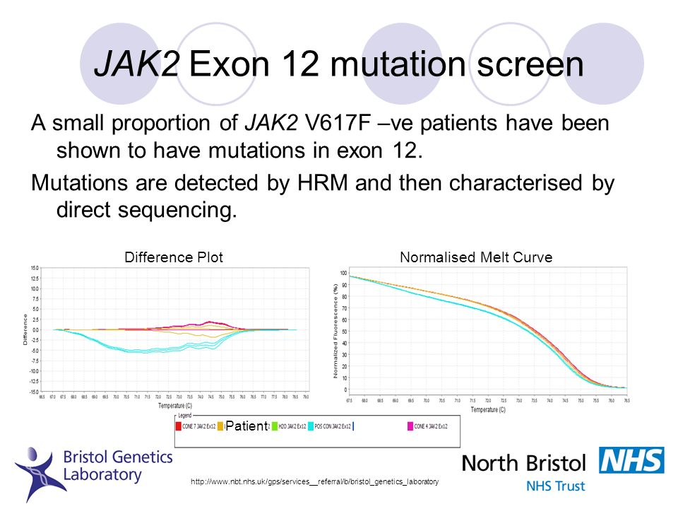 JAK2 Exon 12 mutation screen