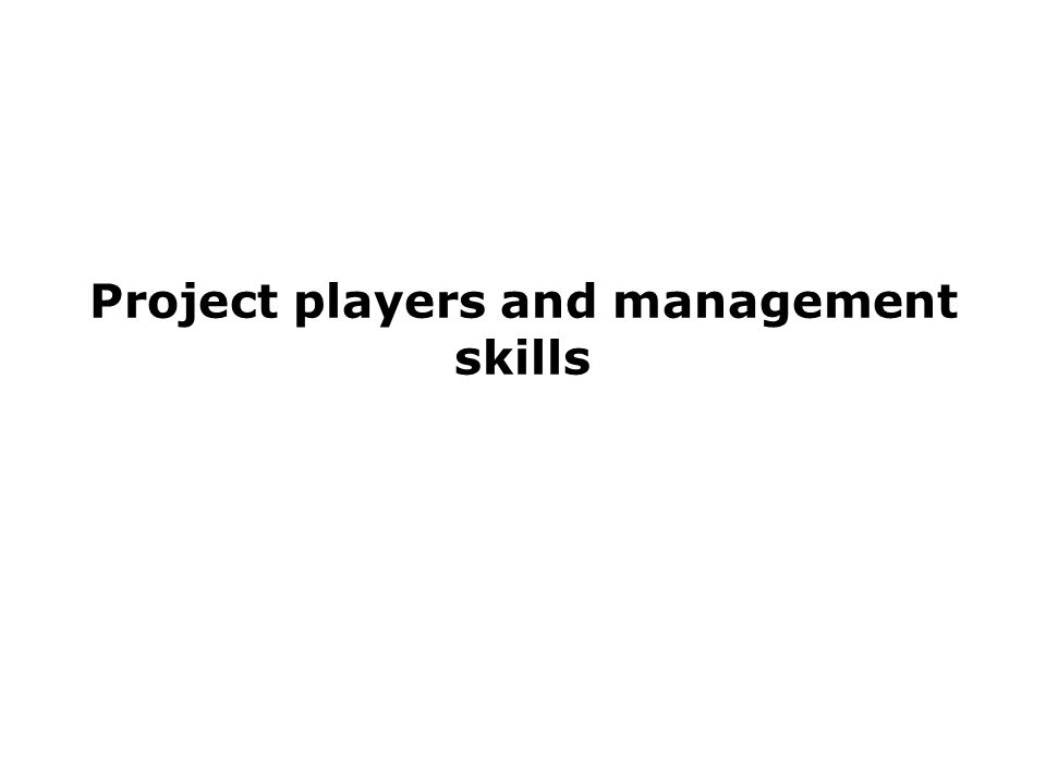 Project players and management skills